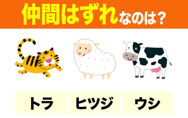 動物の英語【仲間はずれ】わかる?