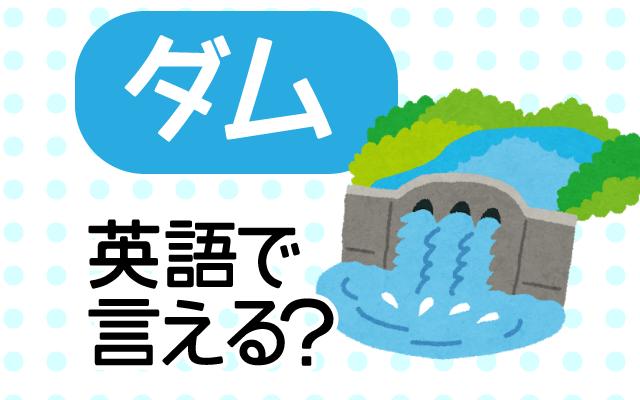 【ダム】は英語で何て言う?