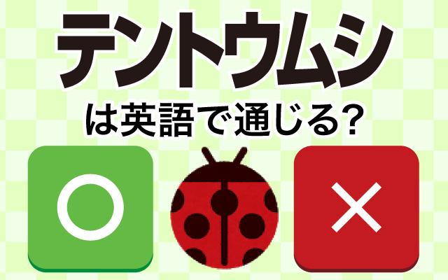 【テントウムシ】って英語で通じる…?