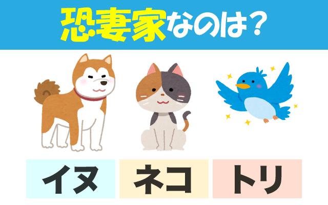 英語で【恐妻家】に使われる動物はどれ?