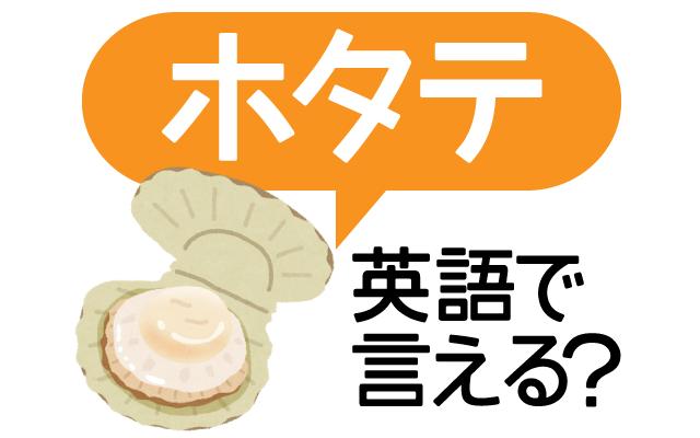 【ホタテ】って英語で言える?