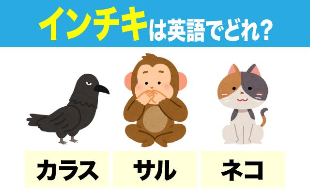 英語で【インチキ】になる動物はどれ?