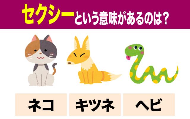 【セクシー】という意味のある動物はどれ?