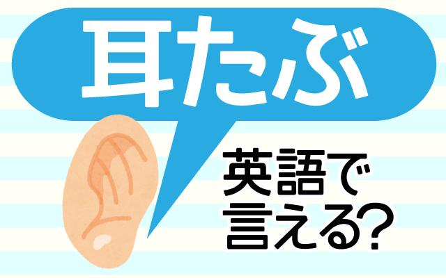 体の英語【耳たぶ】は英語で何て言う?