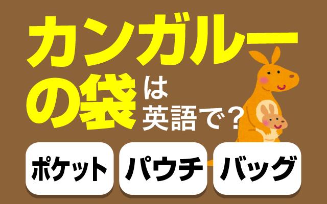 【カンガルーの袋】って英語で何て言う?