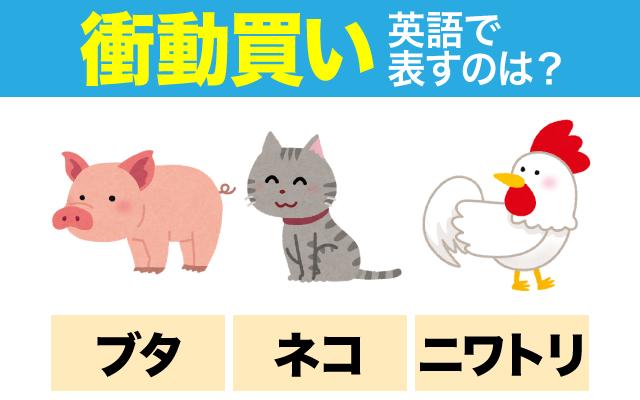 英語で【衝動買い】という表現に使われる動物は?