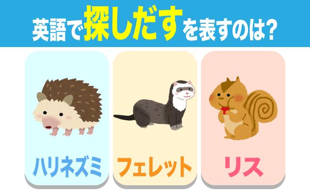 英語で【探し出す】の表現に使う動物はどれ?