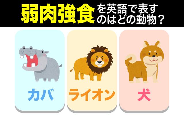 英語で【弱肉強食】の表現に使われる動物は?
