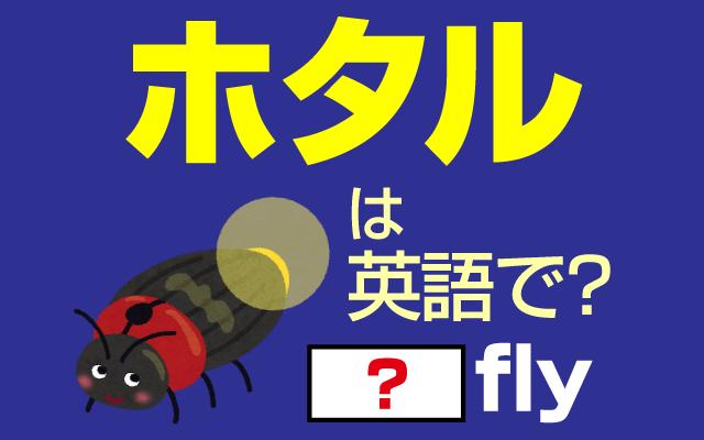 季節の虫【ホタル】は英語で何て言う?