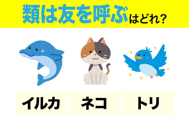 英語で【類は友を呼ぶ】の表現に使われる動物は?