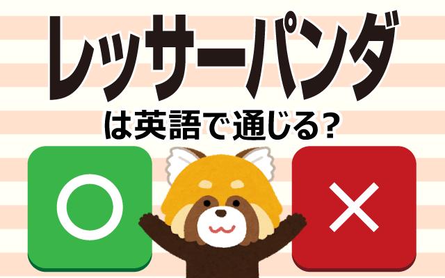 動物園の人気者【レッサーパンダ】は英語で通じる?