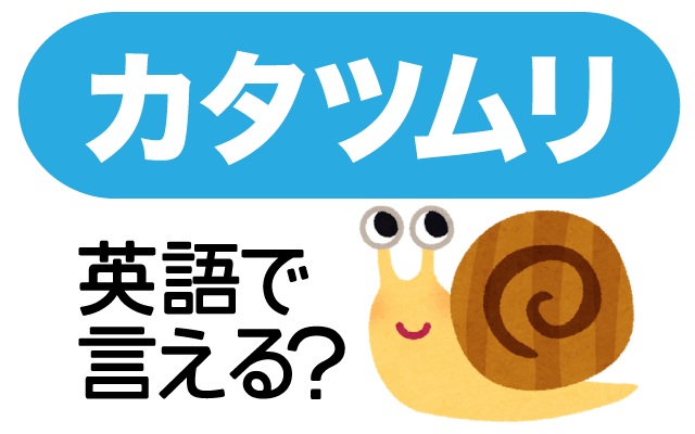 梅雨によく見る生き物【カタツムリ】は英語で?
