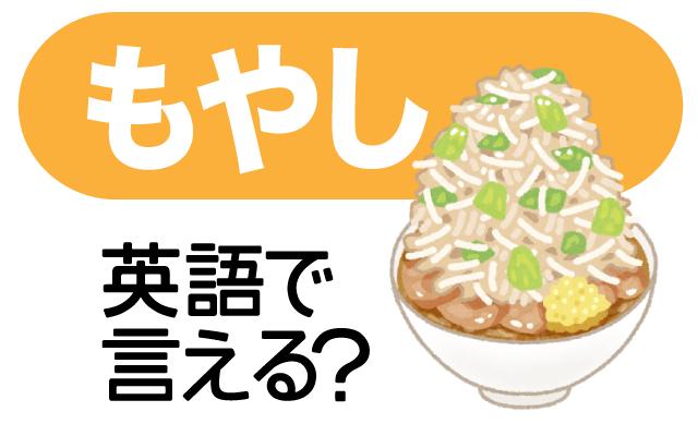 野菜の英語【もやし】は英語で何て言う?
