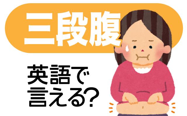【三段腹】って英語で何て言う?