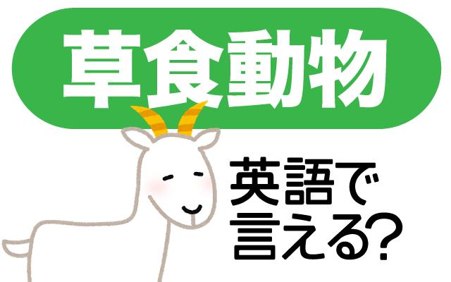 草を食べる【草食動物】は英語で何て言う?