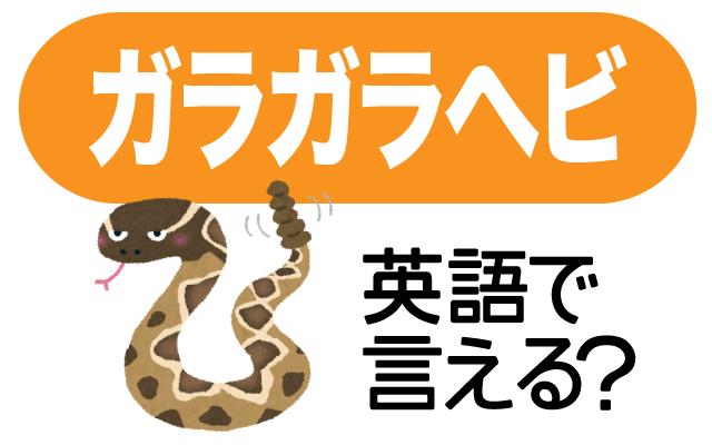 【ガラガラヘビ】は英語で何て言う?