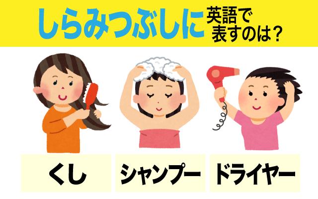 英語で【しらみつぶしに】の表現に使われる髪に関する言葉は?