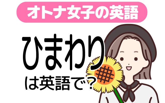 夏に咲く黄色い花【ひまわり(向日葵)】は英語で何て言う?