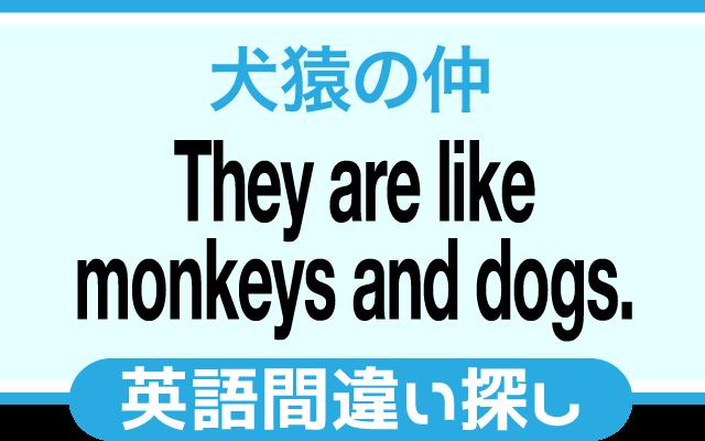 英語の間違い探し【犬猿の仲】の英文にあるミスは?