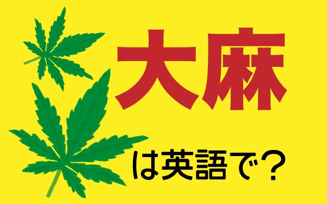 日本では所持や栽培などが違法な【大麻】は英語で何て言う?