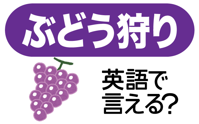 自分でブドウを取る【ぶどう狩り】は英語で何て言う?