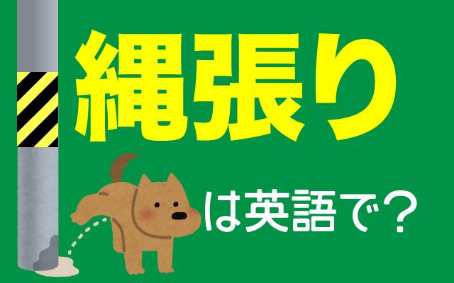 動物たちの【縄張り(ナワバリ)】は英語で何て言う?