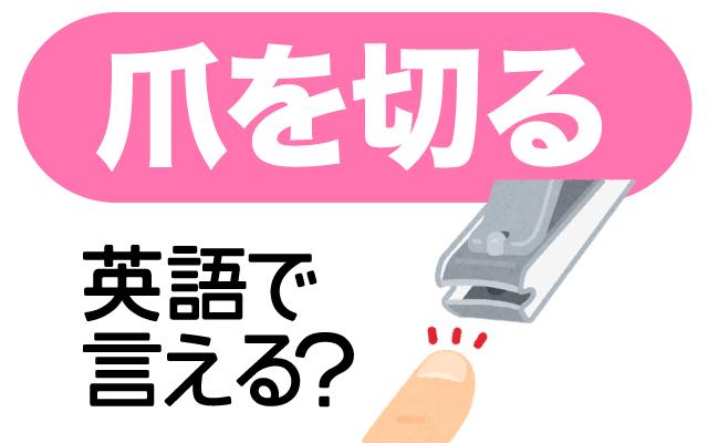 伸びすぎた手や足の【爪を切る】は英語で何て言う?