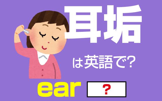 綿棒や耳かきで撮ると気持ちい【耳垢(耳あか)】は英語で何て言う?