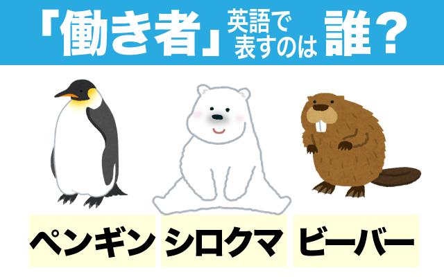 よく働く【働き者】の英語表現に使われる動物はどれ?