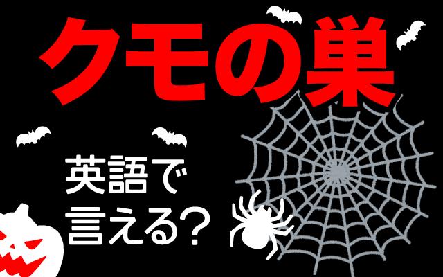 蜘蛛が作る網【クモの巣】は英語で何て言う?