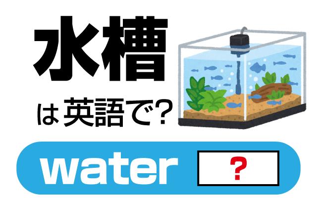 熱帯魚などを飼う【水槽】は英語で何て言う?
