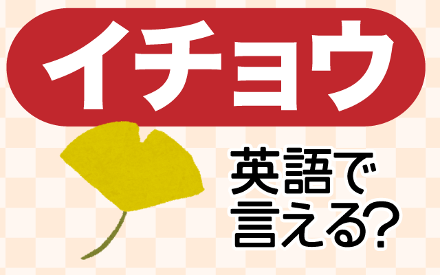 秋に黄色く色づく【イチョウ(銀杏)】は英語で何て言う?