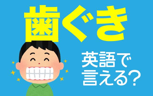 葉の健康に大切な【歯ぐき】は英語で何て言う?