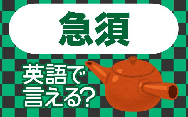 お茶を淹れる【急須】は英語で何て言う?