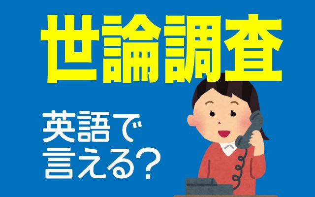 支持率などの【世論調査】は英語で何て言う?