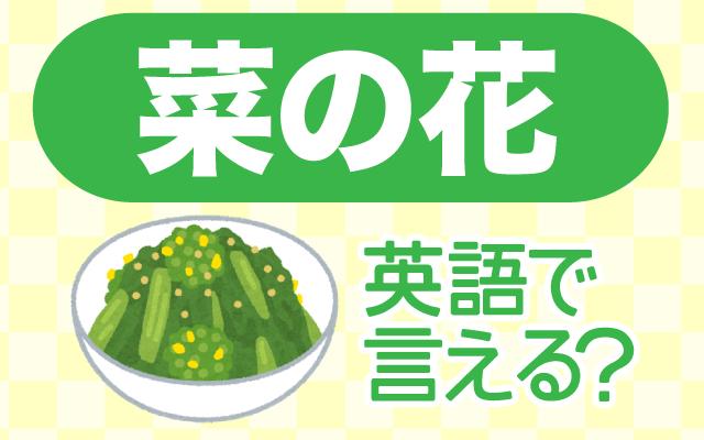 初春に出回る【菜の花】は英語で何て言う?