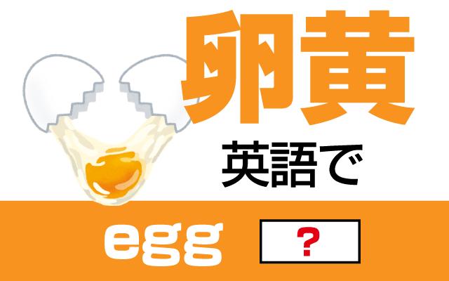 【卵黄(卵の黄身)】は英語で何て言う?