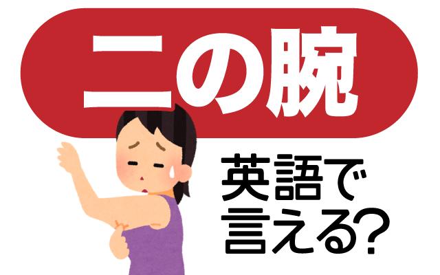 太ると気になる【二の腕】は英語で何て言う?