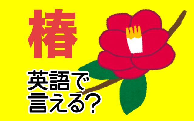 【椿(つばき)】は英語で何て言う?