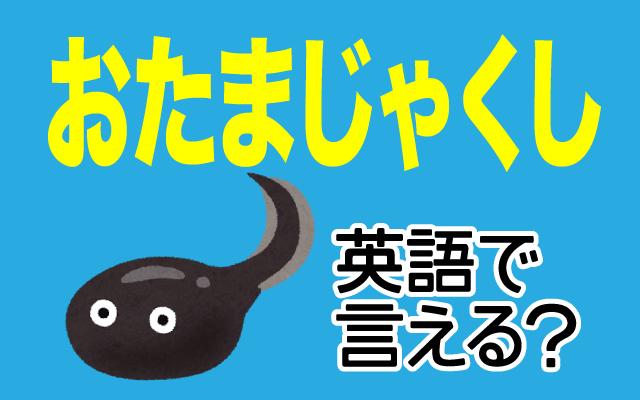 カエルの子供【おたまじゃくし】は英語で何て言う?