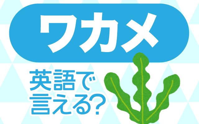 海藻の【ワカメ】は英語で何て言う?