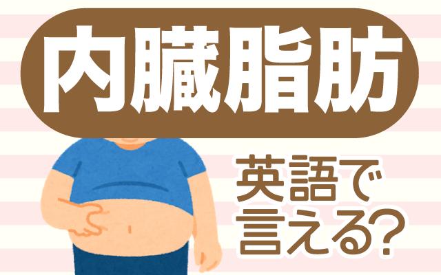 落としにくい【内臓脂肪】は英語で何て言う?