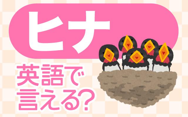 鳥の子供【ヒナ】は英語で何て言う?