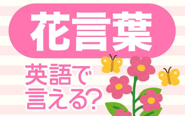 花に隠された意味【花言葉】は英語で何て言う?