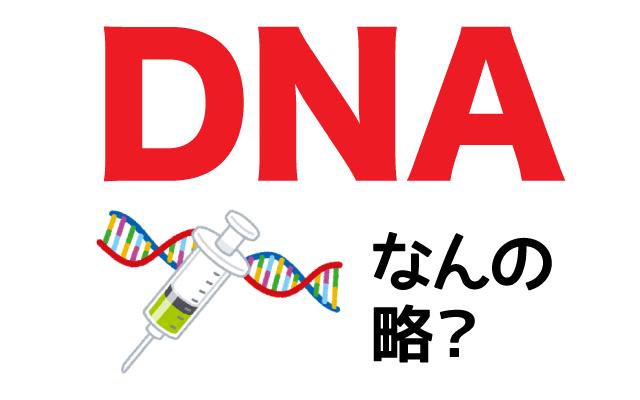【DNA】は英語で何の略?どんな意味?