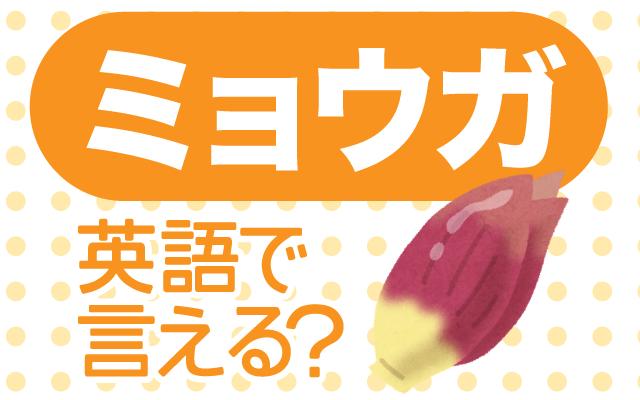 薬味の定番【ミョウガ】は英語で何て言う?