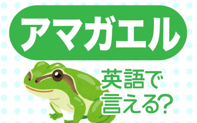 緑色の【アマガエル】は英語で何て言う?