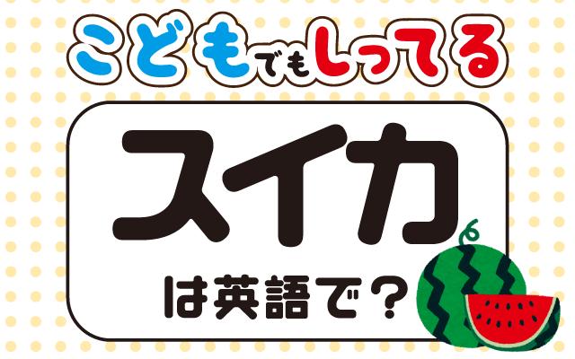 夏の果物【スイカ】は英語で何て言う?