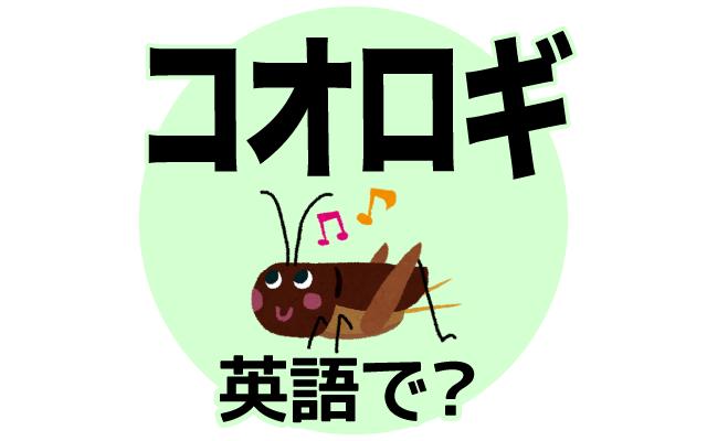 秋に鳴く虫【コオロギ】は英語で何て言う?