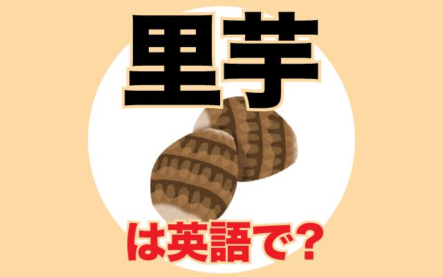 煮物などで使う【里芋】は英語で何て言う?